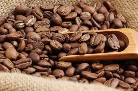 פולי קפה 1 ק