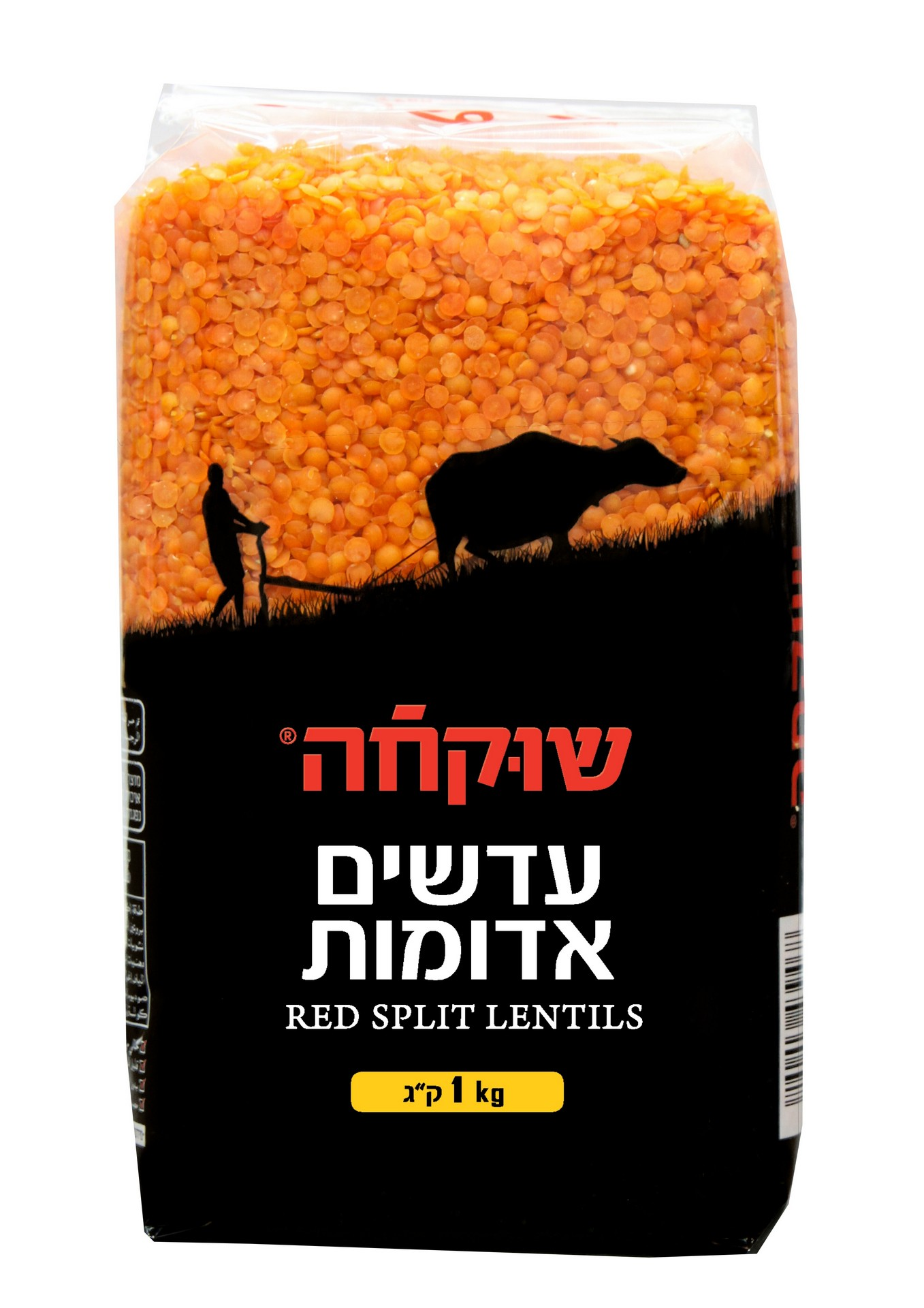 עדשים אדומות